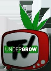 UNDERGROW TV